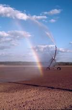 Pivot d'irrigation de 360 mètres de long sur une parcelle de maïs dans une ferme berrichonne près de Brinay (18). Le maïs est une plante introduite qui demande de grandes quantités d'eau pour pousser.
