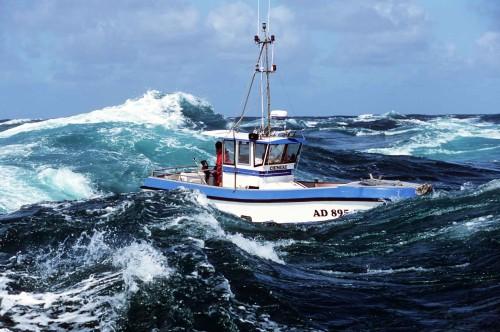 Préférence CNRS/sagascience - Mieux pêcher le bar pour en vivre mieux TW62