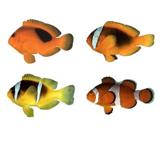 295fe7bc8e74b9 Clown fish   Whence the white stripes